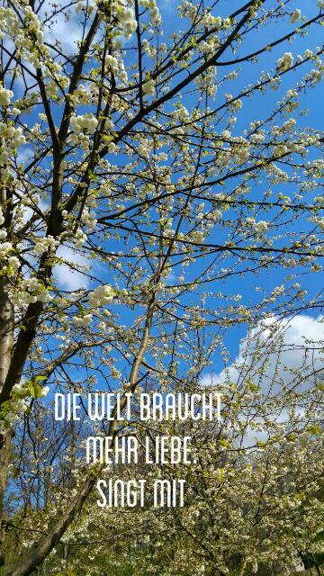 """Aktion """"Die Welt braucht Liebe – singmit"""""""